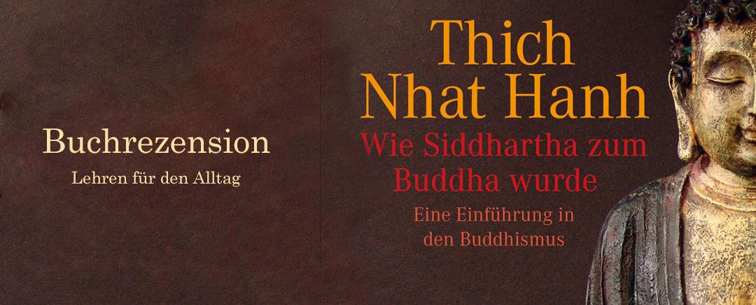Buchrezension: Wie Siddhartha zum Buddha wurde | Lehren für den Alltag