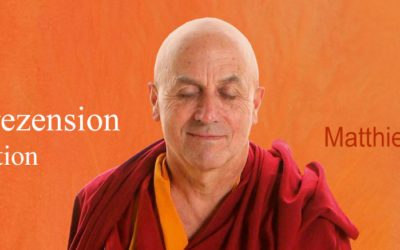 Buchrezension: Meditation