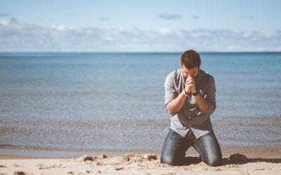 Dankbarkeit: Wieso ich jeden Tag dankbar bin