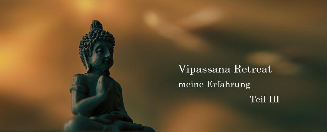Vipassana_erfahrung_teil_III